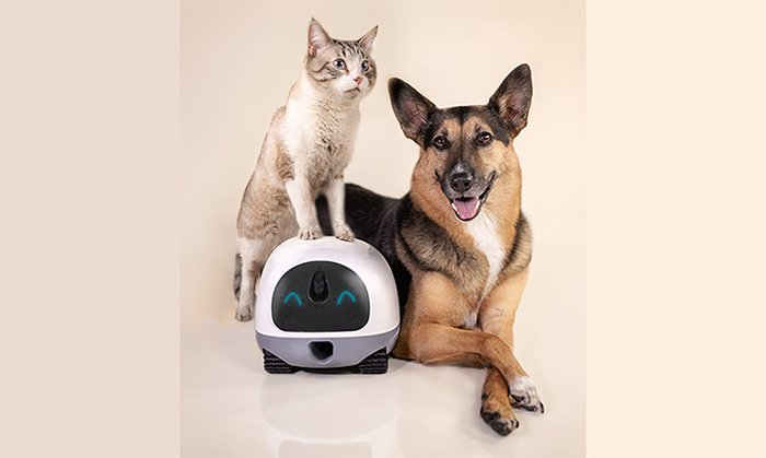 VAVA Mobile Pet Cam helps end pet boredom and separation anxiety