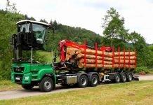 DOLL-Semi-Trailer-Timber-Transport