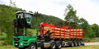 DOLL-Semi-Trailer-Timber-Transport