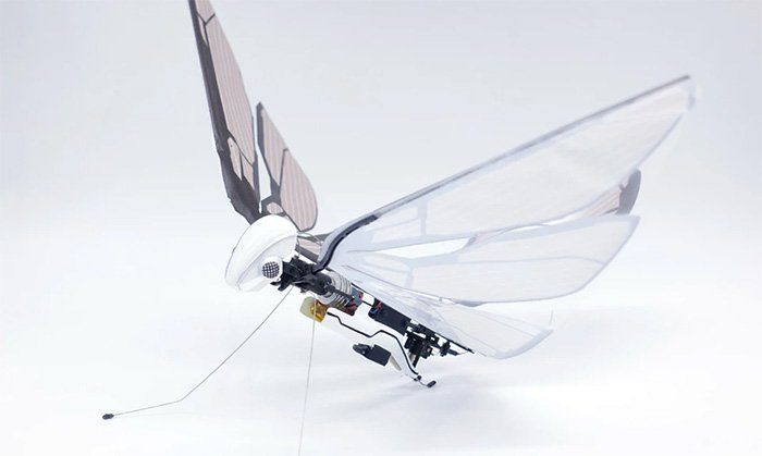 Biomimetic robotic insect lets you experience flight like never before