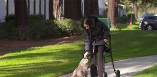 LifeGlider-Walking-Aid-Upright-Mobility