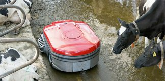 Lely Discovery Collector Manure Robot