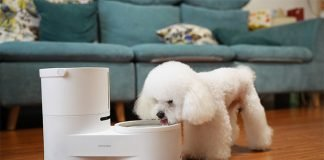 Drinkie Self Cleaning Pet Water Dispenser